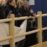Kommentierung der Verkaufspferde durch den Zuchtbezirksvorsitzenden